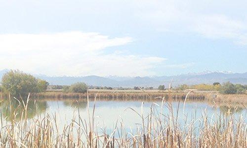 windsor colorado near poudre river