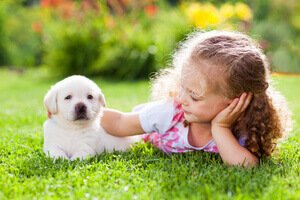 importance of cleaning up pet waste
